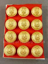 12 Knöpfe LYRA, 16mm, vergoldet, Musiker, Militärmusiker, Uniform, um 1910, S1
