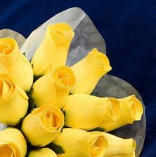 """Baker's Dozen"" Bouquet of 13 Yellow Wood Roses"