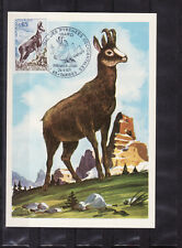 carte  1er jour  nature faune    isard  Tarbes      1971