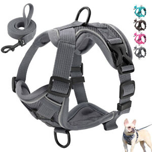Front Clip Puppy Small Dog Harness & Lead Reflective Pet Cat Vest French Bulldog