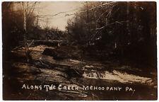 1907 RPPC Mehoopany PA Along the Creek Ferris Wilkes-Barre REAL PHOTO Postcard