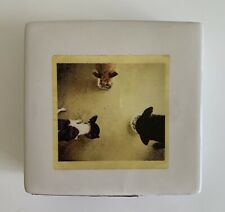 Rae Dunn Decor Ceramic Box Desk Paperweight Dogs Pups Share a Meal with Friends