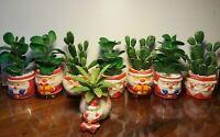 Santa Claus Figurine Vase Pot Ceramic Mini Plant Succulent Planter Flower Décor