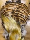 YELLOW GOLDEN PHEASANT WHOLE SKINS - FLY TYING