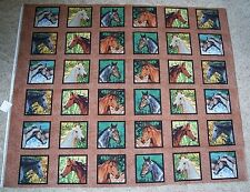 Horses Squares Endless Summer Quilt Panel Fabric Cotton Wildlife Springs