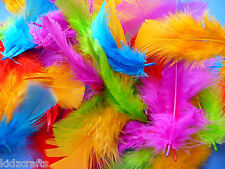 Craft Feathers Assorted Pack 100 Red Yellow Blue Green Purple Kids Crafts