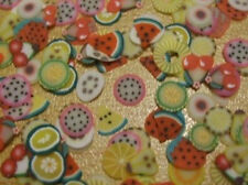 Fimo FRUIT SLICES x200 pieces nail art or for dolls house cakes A85 UK seller