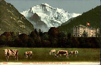 Interlaken Switzerland AK ~1900 Hotel Jungfraublick mit Jungfrau Flagge Fahne