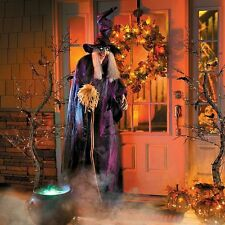 Life Size Animated Speaking Wicked Witch With Broom Halloween Prop Decoration
