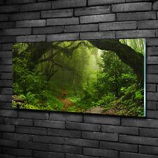 Glas-Bild Wandbilder Druck auf Glas 100x50 Deko Landschaften Dschungel Nepal