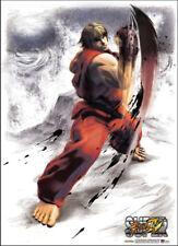 Fabric Poster - Street Fighter IV - New Ken Uppercut Wall Scroll Art ge77679