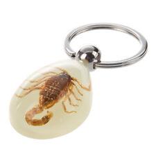 New Raindrop Shaped Scorpion Amber Pendant Split Flat Ring Keychain Adron CS