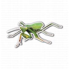 Praying Mantis Insect Sticker