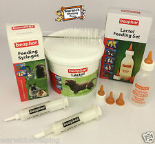 Lactol Puppy Milk 250 with Feeding Bottle , Syringe & Teats Beaphar Whelping Kit