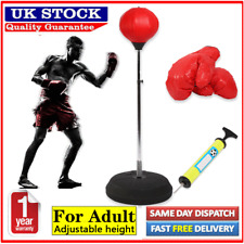 Adult Boxing Set Punch Bag Ball Mitts Gloves Kit Standing Speed Training