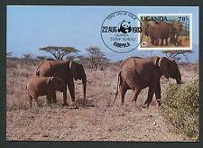 UGANDA MK FAUNA ELEFANTEN ELEPHANTS MAXIMUMKARTE CARTE MAXIMUM CARD MC CM m117