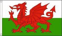 Wales 5ft x 3ft Flag Welsh Dragon National Flag 6 Nations Rugby Banner
