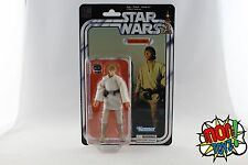 Luke Skywalker -Star Wars The Black Series 40th Anniversary Action Figure