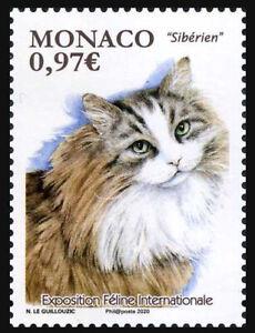 2020 Monaco, pets, cats, stamp, MNH