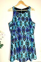 SPORTSGIRL Blue Floral Size 16 Fit & Flared Sleeveless Pleated Lined Midi Dress
