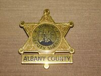 "VINTAGE 2 1/2"" ACROSS JUNIOR DEPUTY SHERIFF ALBANY COUNTY PLASTIC TOY STAR BADGE"