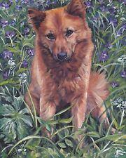 "Finnish Spitz portrait dog art Canvas Printof lashepard painting Lshep 8x10"""