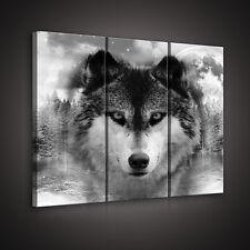CANVAS Wandbild Leinwandbild WOLF TIER TIEREN NATUR NACHT WALD MOND 3FX10147S6