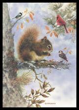 356-Msa Giordano Bird Squirrel Christmas Greeting Card New