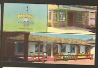 Unused Postcard Nackard Inn Motel Center of Flagstaff Arizona AZ 3 views