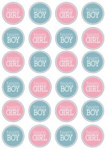 Gender Reveal Blue or Pink Boy or Girl on 24 x Edible Cup Cake Cupcake Toppers