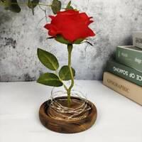 New Enchanted Glass Dome Rose LED Rose Night Light Birthday Gift Home UK