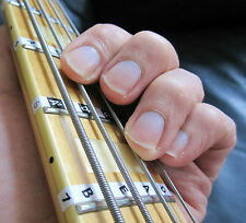 Bass Guitar Fretboard Scale Labels Stickers - LEFT HANDED + Free Online Lessons