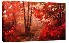 """LARGE AUTUMN FOREST LANDSCAPE CANVAS PICTURE 34""""x20"""""""