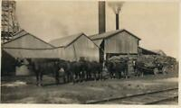 VINTAGE REAL PHOTO of a HORSE TEAM PULLING TIMBER standing beside OLD SHEDS
