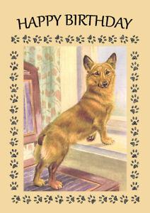 CORGI DOG AT THE WINDOW GREAT  BIRTHDAY GREETINGS NOTE CARD