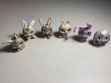 Lot of 6 Littlest Pet Shop Rabbit Bunny Figures