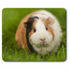 Computer Mouse Mat - Tri Coloured Guinea Pig Pet Rodent Office Gift #15969