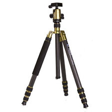 Triopo GT-2804X8C Adjustable Portable Carbon Fiber Tripod with B-2 Ball Head