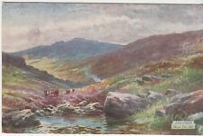 Postcard 1900s Dartmoor near Yeo Tor unused