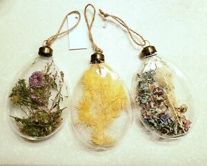 Anthropologie 3 real dried flower filled glass egg ornaments easter xmas