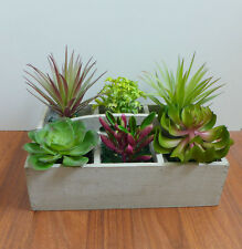 Set of 7 Artificial Plastic Mini Succulents Plants Landscape