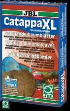 Jbl Catappa xl-healing Indio Almendra hojas en el Xl Formato