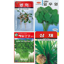 Korea vegetable herb seeds Tree Garden Seed Farm Agriculture Sheperd`s Purse냉이우엉
