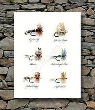 "Fly Fishing ""DRY FLIES"" Watercolor 11 x 14 ART Print Signed by Artist DJR"