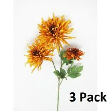 Spider Mums Chrysanthemum Long Stems - Orange - 25 inches Long with 3 Heads