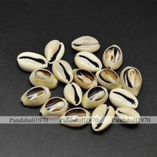 PaleGoldenrod No Hole Conch Shell Beads Crafts Jewelry Making 17~20x10~12x5~6mm