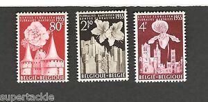 1955 Belgium SCOTT #482-484 FLOWERS MNH stamps