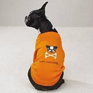 Casual Canine Glow in the Dark  Dog Pet Halloween Sweatshirt, XS