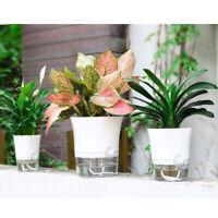 Wall Self Watering Plant Flower-Pot Planter Basket Garden Home Plastic Decor Uk