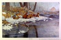 Jim Hansel Creekside Buck Deer Print 12 x 7.5